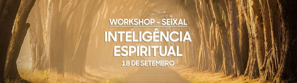 Workshop Inteligência Espiritual - 18 de Setembro - Seixal