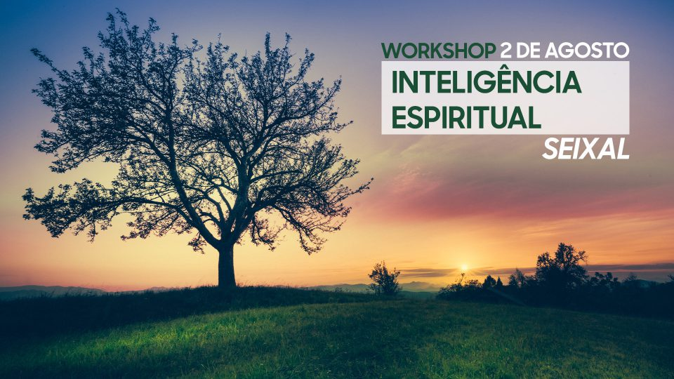 Workshop Inteligência Espiritual Seixal - 2 de Agosto