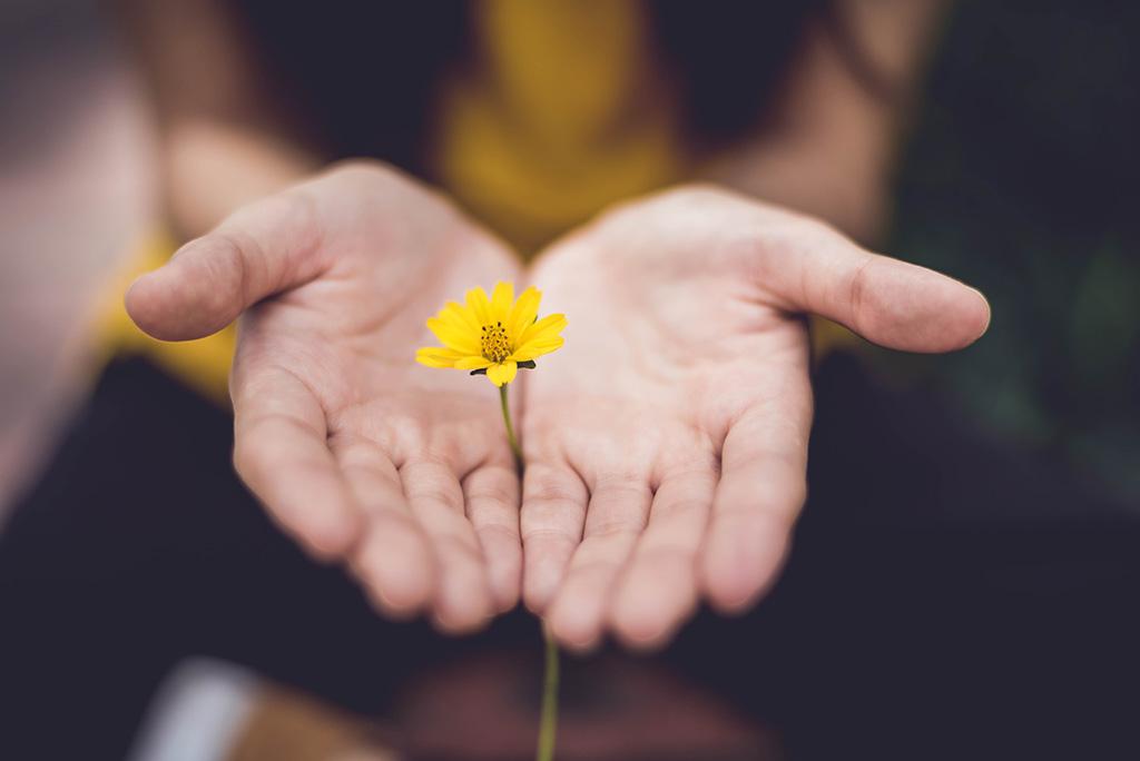 Mulher a segurar uma flor amarela